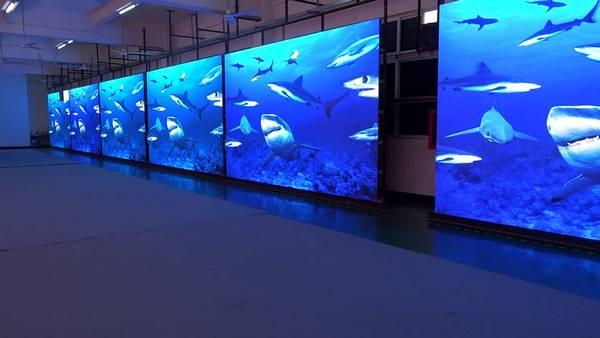 3 mẫu màn hình led indoor phù hợp nhiều không gian 2